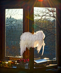 Wings of illumination by Leopold Brix