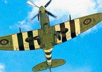 Spitfire von Nigel  Bangert