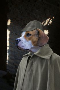 Sherlock Dog - Der Hund von Baskerville by ir-md