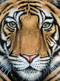 Tiger's Last Roar von Nicole Zeug