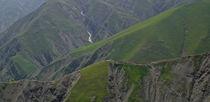 Grüner Kaukausus von derdia