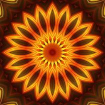 Mandala Sonnenblume von Christine Bässler