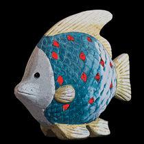 Fish by David Pringle