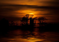 Golden setting Sunset by Mike Gorton