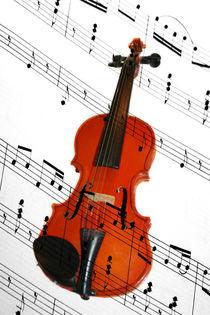 Die Geige by gitana