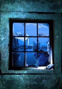 Katze im Fenster von Thomas Walterscheid