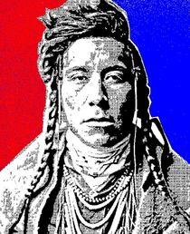 Bird on High Land-Crow Indian von Otis Porritt