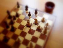 Das Schachspiel von Kira Homola