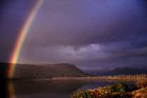 Rainbow by Ross Woodhall