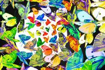 Mondgeflatter von Angelika Wiedemeyer