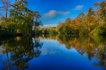 Loch Neaton in Watton von Mark Bunning
