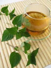 Tee mit Honigmelonen-Salbei von Heike Rau