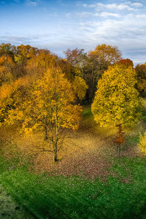 Immenburgpark von Marcus A. Hubert