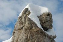 Schneeblinder Löwe aus Stein von Matthias Hauser