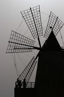 Windmill by Matteo Angelotti