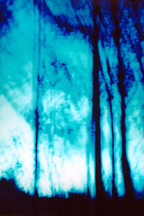 Blue Twilight Forest 3 by Sharon Harvey