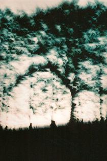Twilight Tree by Sharon Harvey