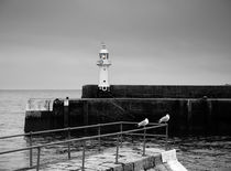 Mevagissey Lighthouse by Louise Heusinkveld