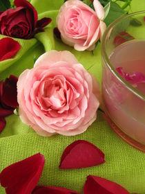 Rosenblütengelee by Heike Rau