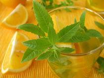 Orangelimonade mit Zitronenverbene von Heike Rau