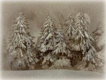 Schneegestöber  von Elke Balzen