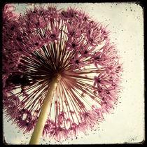 Explosion Florale by Marc Loret