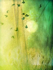 dreamtime by Franziska Rullert