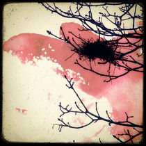 Le Nid Dans l'arbre von Marc Loret