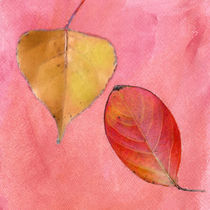 Leaf Study ink Pink von Betty LaRue