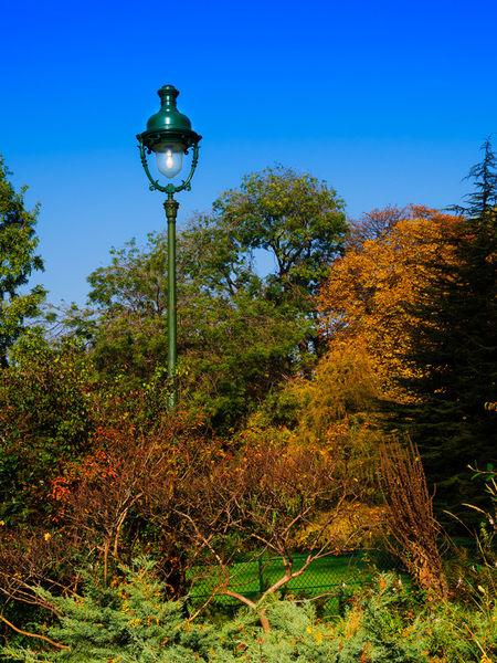 Autumn0460