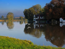 River Thames at Cookham, Berkshire. by Louise Heusinkveld