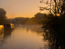 Misty morning on the Grand Union Canal by Louise Heusinkveld