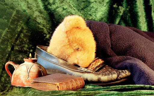 Sleeping-teddy