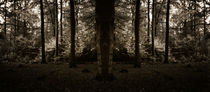 Forest-mirror-bw-2a