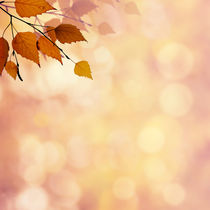 Abstract autumnal backgrounds by Dmytro Tolokonov