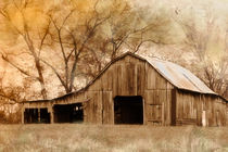 American West Barn by Betty LaRue
