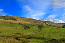 Mallerstang-dale0742