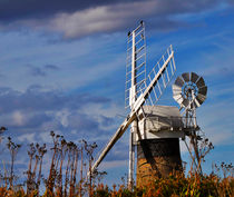 St Benets Drainage Mill, Norfolk by Louise Heusinkveld