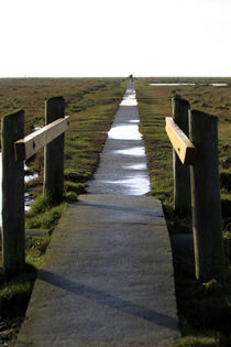 Weg von Jens Berger