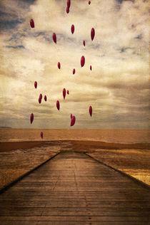 Floating Free by Dawn Cox
