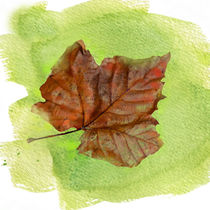 Autumn Leaf Watercolor von Betty LaRue