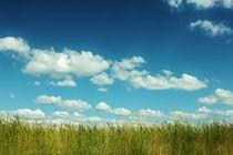Sky von Michael Beilicke