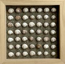 Snails Pace von Robert Ball