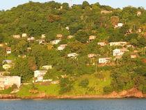 Grenada Island by Peter Robinson
