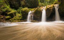 Mullerthal Waterfall by Maciej Markiewicz