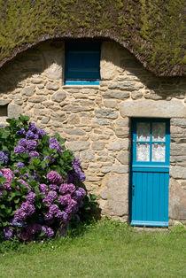 'Blue door and hydrangeas - Blaue Tür und Hortensien' von Ralf Rosendahl