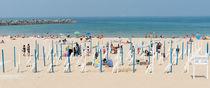 Strand von Martin Arnold