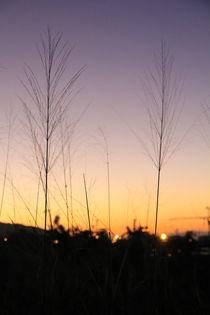 Reunion sun set by aymeric bein