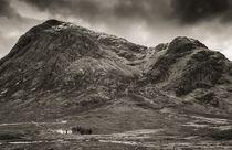 20120509-scotland-0097