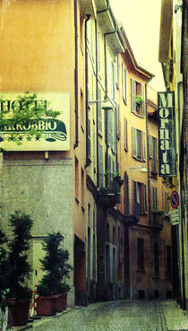Glimpse II by Katia Zaccaria-Cowan